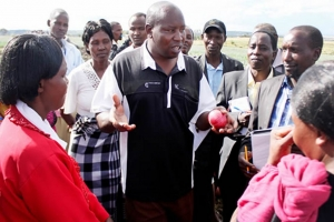 Eastern region farmers reaping millions from sales through commercial village business
